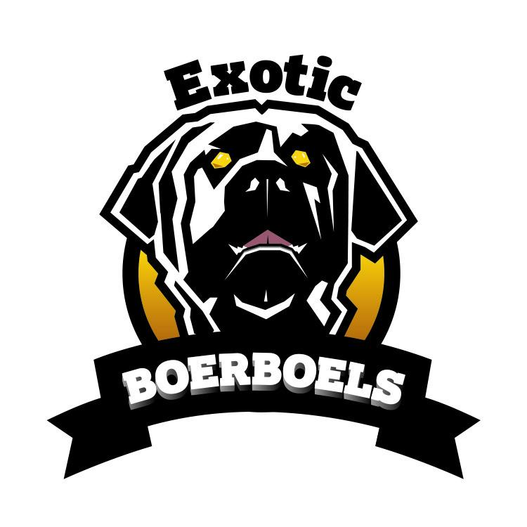 Exotic Boerboel Breeders - South African Boerboel Puppies
